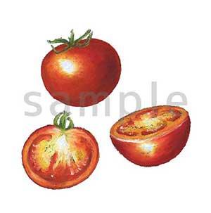 チョークアートイラスト トマト1