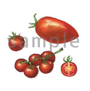チョークアートイラスト トマト2
