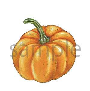 チョークアートイラスト かぼちゃ
