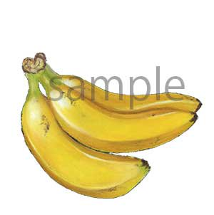 チョークアートイラスト バナナ
