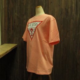 【GUESS/ゲス】ハローキティコラボ半袖Tシャツ 細キティ柄 ピンク