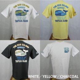 【Selected Bland】半袖Tシャツ THE BIG ISLAND