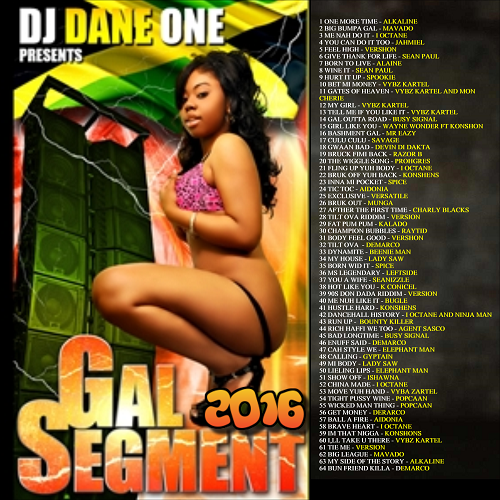 DJ Dane One - Gal Segment Dancehall MIXCD g 20160916