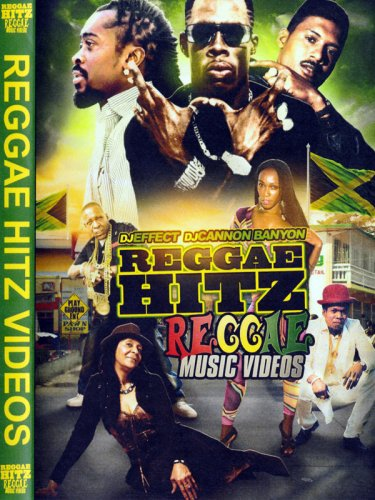 <img class='new_mark_img1' src='//img.shop-pro.jp/img/new/icons1.gif' style='border:none;display:inline;margin:0px;padding:0px;width:auto;' />DJ Effect - Reggae Hitz DVD