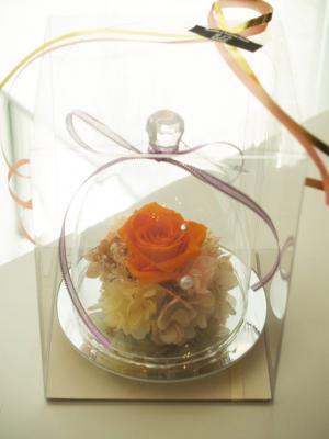ダイヤミラーガラスドーム タンジェリンオレンジ