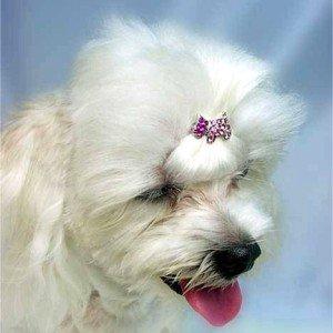 スワロフスキーヘアピン-Doggie