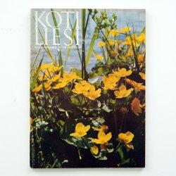 KOTILIESI - フィンランドの女性誌 - 1969年 No.10