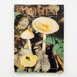 KOTILIESI - フィンランドの女性誌 - 1966年 No.18