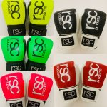 WORKOUT BOXING GLOVES 8oz / ワークアウト ボクシンググローブ  8oz