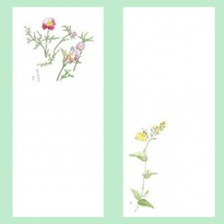 〈和紙製〉四季の庭・一筆箋 No.1 ★ 食品対応和紙 ★