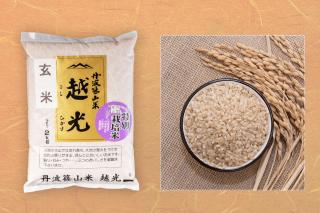 新米 丹波篠山 越 光 玄米(減農薬)  (令和2年度産)