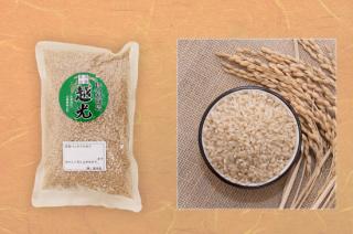 丹波篠山 越 光 玄米(減農薬)  2kg<br>(令和元年度産)