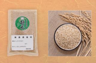 丹波篠山 越光 玄米(無農薬)1kg(真空パック) <br>(令和元年度産)