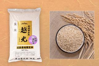 丹波篠山産 玄米 減農薬栽培米 越光 5kg(令和2年度産)