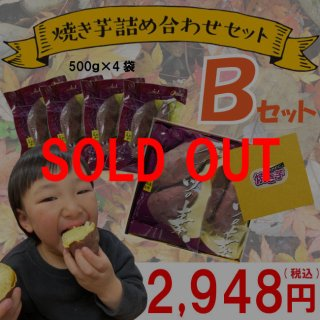 スイーツの素500g×4 【B】セット