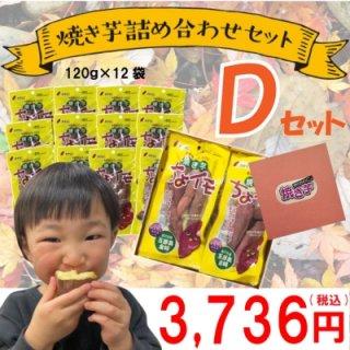 焼き芋ちょイモ (120g)×12 Dセット 【贈答用】【期間限定】【加賀野菜】【さつまいも】【プレゼント】【ミニサイズ】【お子様に】【受注生産】【化粧箱】