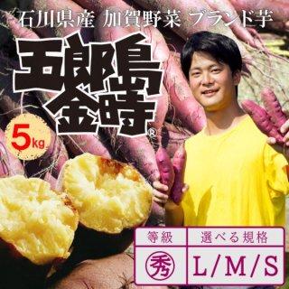五郎島金時生芋(〇秀M) 5kg入