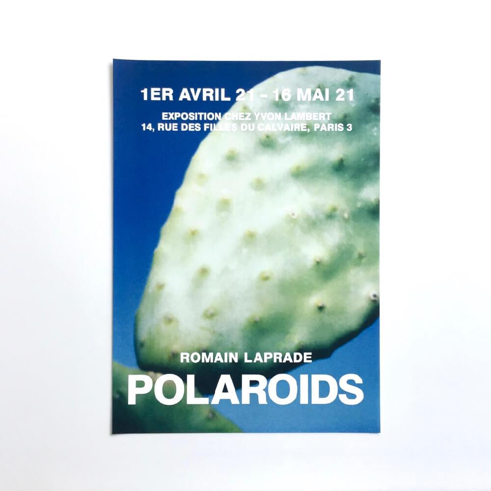 Romain Laprade / Polaroids (Posters) / Cuctus