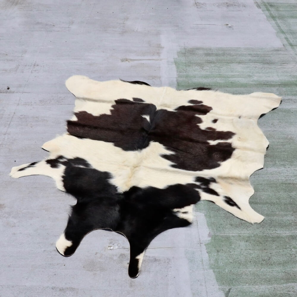 Cow rug_233