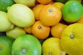 いわぎの柑橘アソートセット Lサイズ