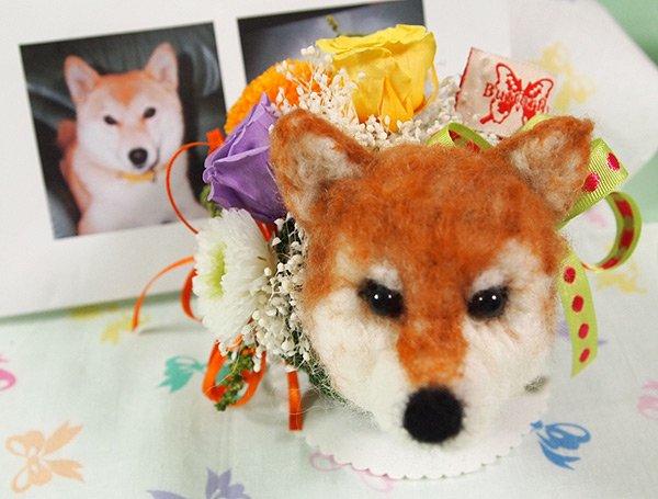 柴犬(お顔参考)