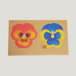ホテルバタフライ 封筒 オレンジ/ブルー