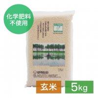 減農薬 あきたこまち 玄米 5kg