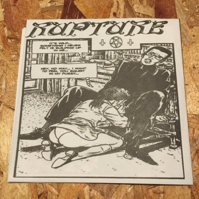 【中古】 RAPTURE / STUPID BABIES GO MAD 『split』 (7