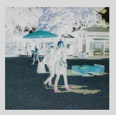 kamitani 『CARLA CARDINAL』 (CD/JPN)