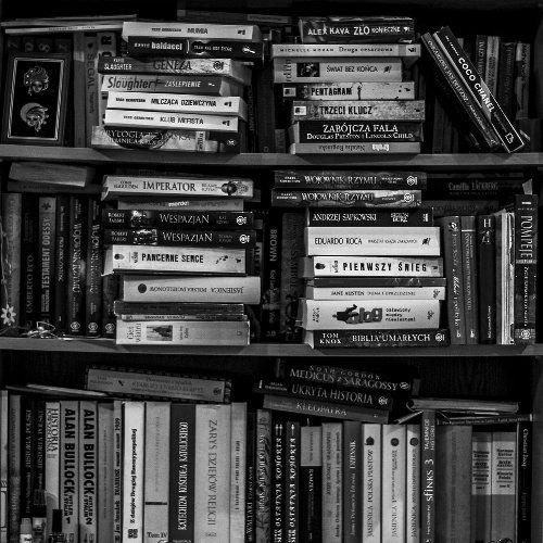 部屋を本で飾る