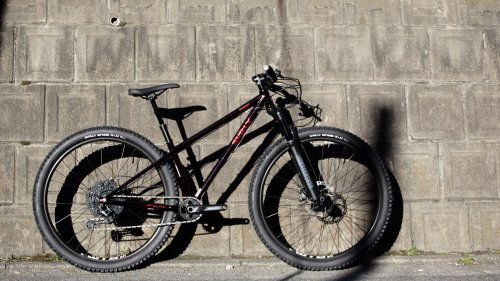SURLY / KRAMPUS SUS / 29