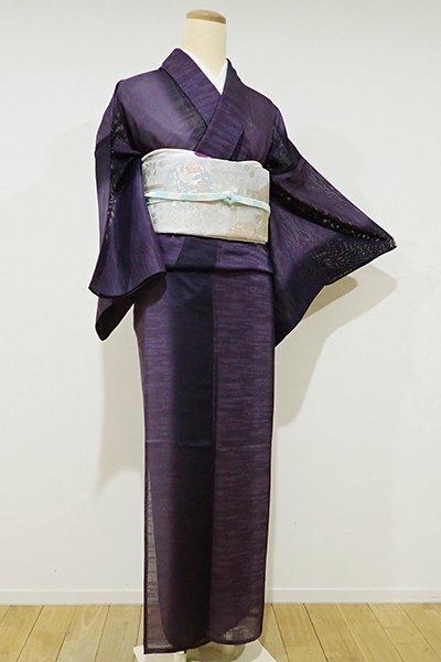 WEB限定【D-1899】紋紗 小紋 深紫色濃淡 竪暈かし