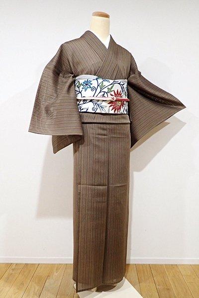 WEB限定【A-2409】紗紬  煎茶色 子持ち縞
