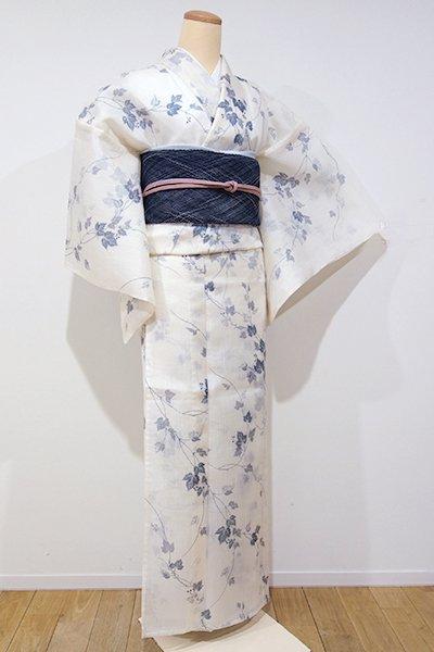銀座【D-1950】紗紬 小紋 象牙色 蔦の図(しつけ付)