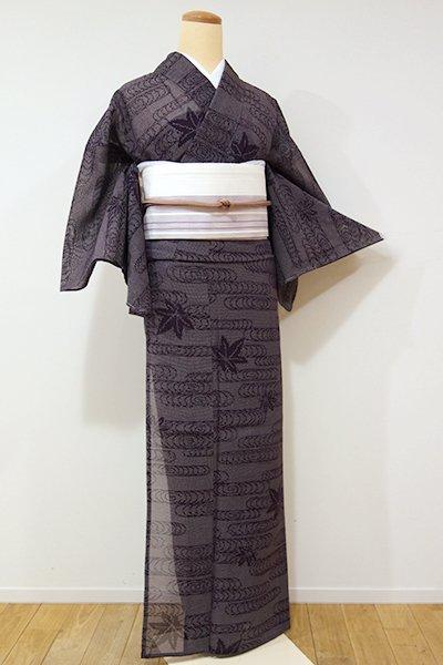 WEB限定【A-2455】紗紬 紫鳶色 観世水に楓の図