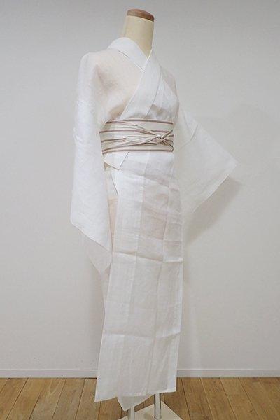 WEB限定【F-321】麻 紋紗 長襦袢 白色 撫子の地紋