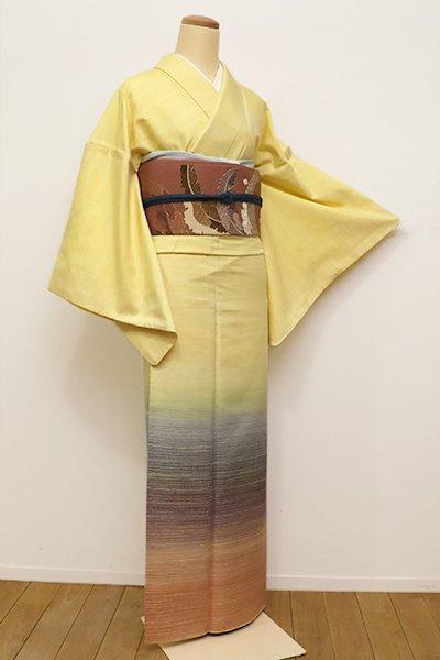 銀座【B-2098】諏訪好風作 紬地 付下げ 淡黄色 多彩な段暈かし(落款入)