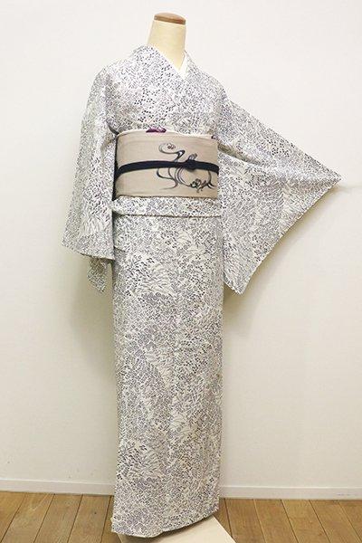 WEB限定【D-2172】(S・細め)きもの英製 単衣 小紋 秋草文