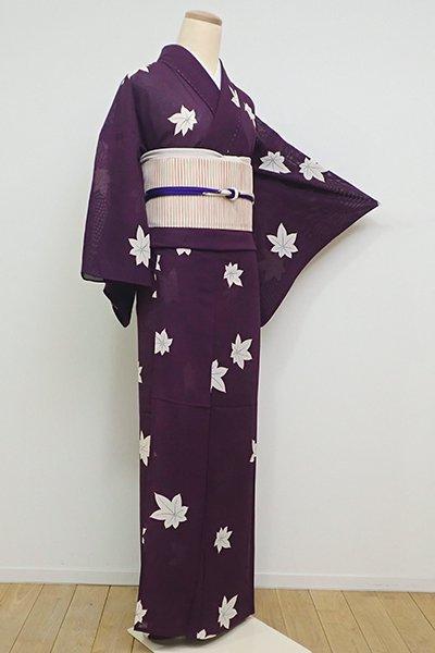 WEB限定【D-2227】(S・細め)絽 小紋 紫紺色 楓の図