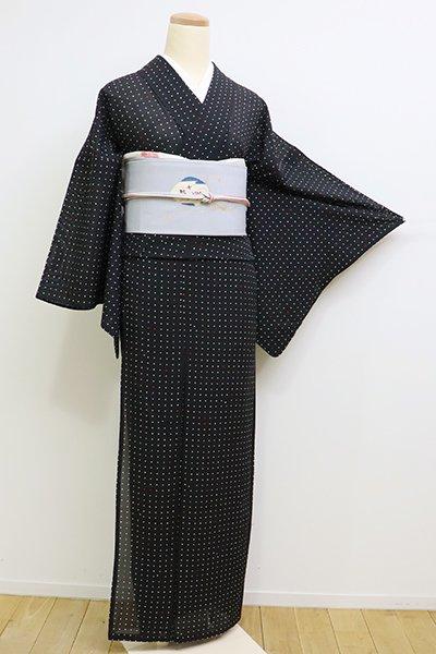 WEB限定【D-2256】(S)絽 小紋 黒色 ドット