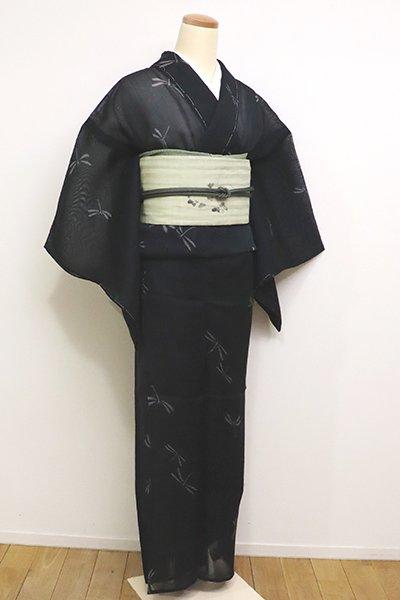 銀座【A-2849】(S・広め)紗紬 深い褐返色 蜻蛉の図(しつけ付)
