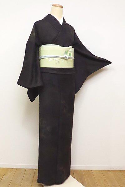 銀座【D-2311】(広め)紋紗 小紋 檳榔子染色 蔦の図