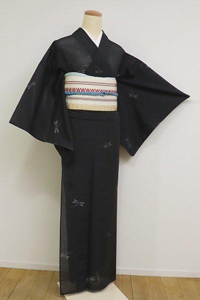 【A-3153】竪絽紬 藍墨茶色 蜻蛉の図(反端付)