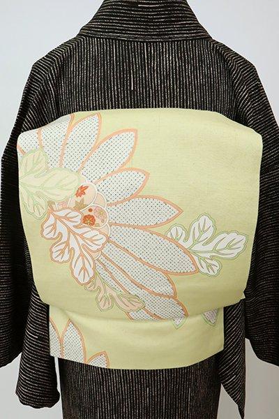 銀座【K-7799】紬地 染名古屋帯 女郎花色 菊の図