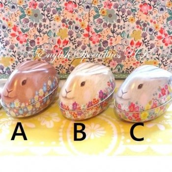<img class='new_mark_img1' src='https://img.shop-pro.jp/img/new/icons20.gif' style='border:none;display:inline;margin:0px;padding:0px;width:auto;' />★SALE!  Easter BUNNY Tin <br>イースターバニー缶 (缶のみ)