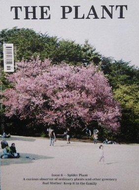「The Plant」 植物 オリヅルラン号 川内倫子/Camille Henrot