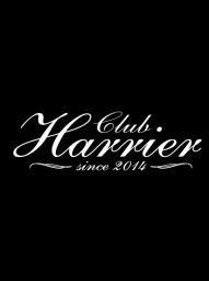 HARRIER ハリアー -007 ステッカー