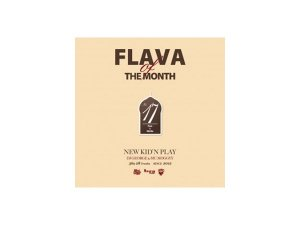 NEW KID'N PLAY DJ GEORGE & MC MOGGYY / FLAVA OF THE MONTH No.17