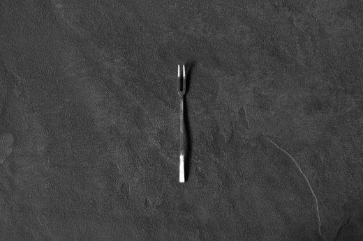 竹俣勇壱 fork-S
