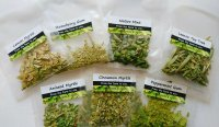 Native Herb Tea お試しセット (7種類)